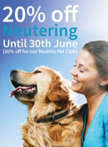 20% off neutering campaign banner